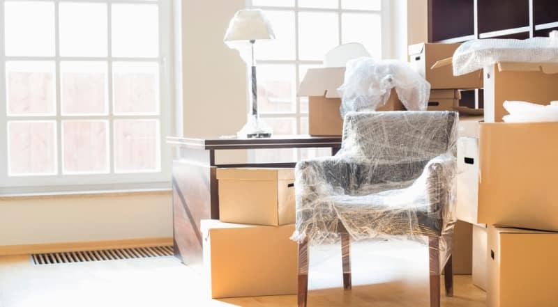 Protege muebles, guardaescobas, suelos y techo